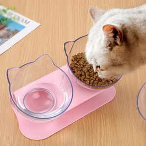 Non-slip Cat Bowls Double Bowls With Raised Stand