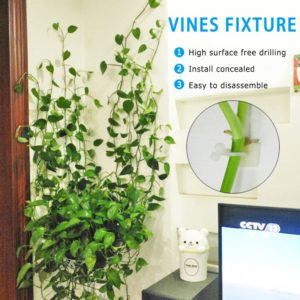 10pcs Invisible Wall Rattan Clamp Clip Invisible Wall Vine Climbing Sticky Hook Rattan Fixed Clip Bracket Plant Stent Supports