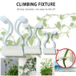 10pcs Invisible Wall Rattan Clamp Clip Invisible Wall Vine Climbing Sticky Hook Rattan Fixed Clip Bracket Plant Stent Supports 2